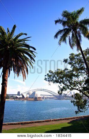 Sydney Skyline ..