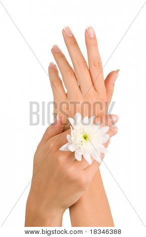 Well-groomed beautiful female hands