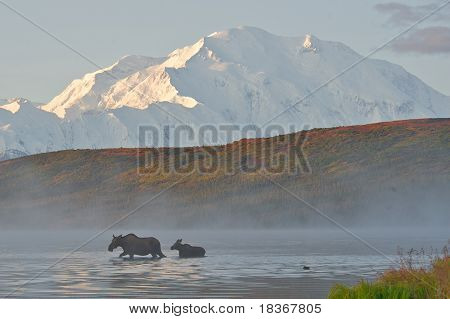 Mt Denali Sunrise