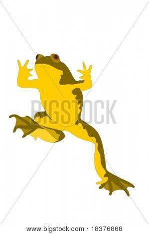 vector - frog climbing up