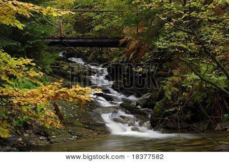 forest waterfall on river Vrazedny - Jesenik mountains - Czech republic