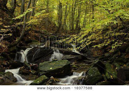 cascade river Vrazedny in autumn time - Jesenik mountains, Czech republic