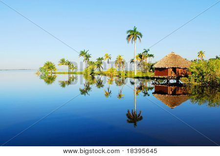 Romantic bamboo cottage and palm trees in Zapata swamp area on caribbean island Cuba