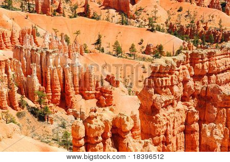 Bryce canyon with orange hoodoo's