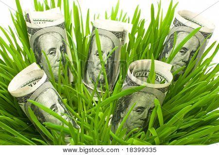 dólares em grama