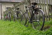 old velocipedes along the wooden fence