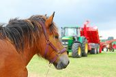 stock photo of horse plowing  - conceptual image of horsepower - JPG