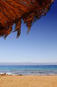 View from under palm leaves on the Red Sea in Aqaba Jordan with view on Egypt on the horizon