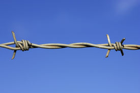 image of barbed wire fence  - detail of barbed wire fence against a blue sky with space for text - JPG