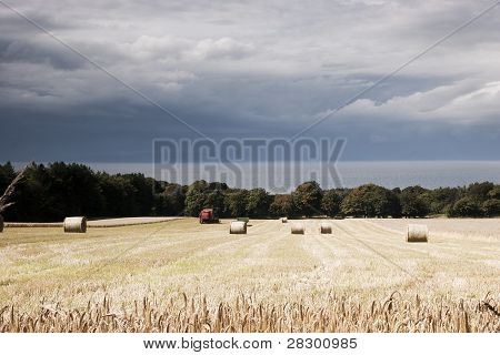 Hay bales and cloud