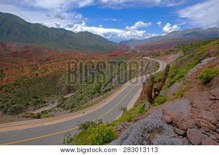 The Famous Road Ruta 40