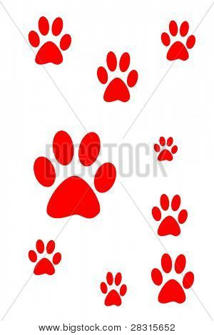 Dog prints ilustration