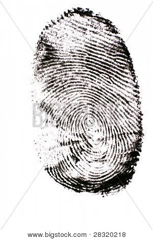 Finger print isolated on the white background