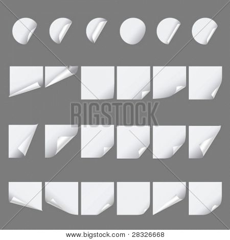 Set of paper curls