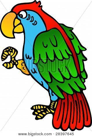 Parrot Yellow Beak