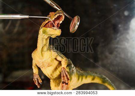 Dinosaur Velociraptor Examine Teeth With