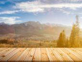 Pine planks background poster