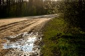Rural Landscape With Empty Countryside Dirt Wet Road. Dirt Road Leading Through Forest In Latvia. Pu poster