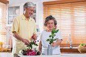 Asian Senior Couple Husband And Wife Flower Arrangement To Vase On Table In Kitchen At Home In Valen poster