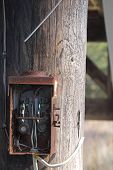 picture of osha  - An old electrical box on a telephone pole - JPG