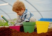 Garden Tools. Small Boy Farmer Works With Garden Tools. Garden Tools For Planting In Greenhouse. Gar poster