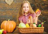 Kid Girl Near Basket Full Of Fresh Vegetables Harvest Rustic Style. Farm Market Fall Harvest. Child  poster