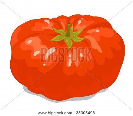 Big tomato 1