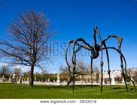 Big Black Spider In Garden Of Versailles