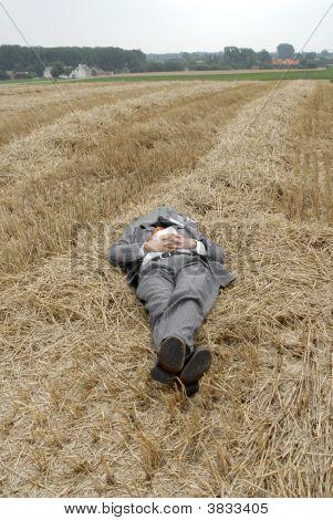 Business Man Sleeping In A Straw Field