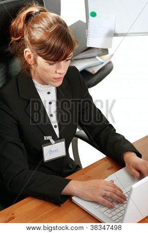 Business Lady With  A Laptop