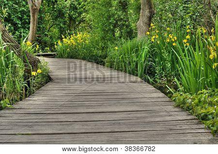 Fußgängerbrücke im Krka Nationalpark, Dalmatien, Kroatien