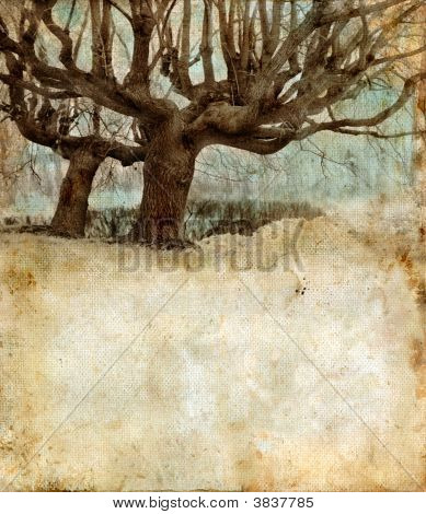 Willow Trees On A Grunge Background