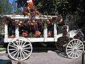 image of hearse  - Hearse decoraed for Halloween and Christmas and oddly Christmas - JPG