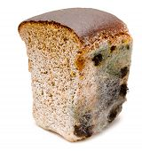 picture of taint  - half a loaf of mouldy rye bread - JPG