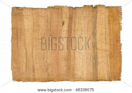 isolated antique papyrus on a white backround