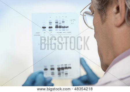 Closeup rear view of a cropped male scientist looking at DNA test results