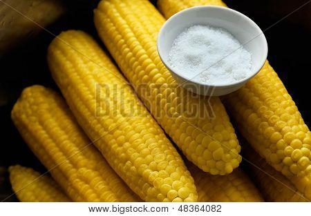 Corn cobs with salt