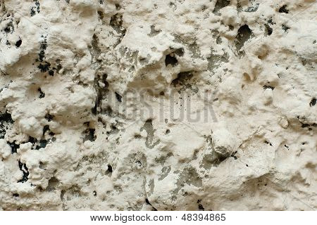 The Plastered Surface