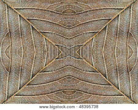 Autumn Leaf Symmetrical Texture.background
