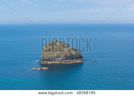 Gull Rock Trebarwith Strand Cornwall near Tintagel Cornwall England UK