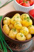 Young boiled potatoes with dill in oil on the bowl
