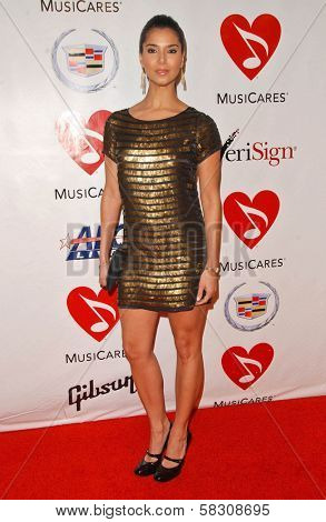 Roselyn Sanchez at the 2007 MusiCares Person of the Year Honoring Don Henley. Los Angeles Convention Center, Los Angeles, CA. 02-09-07