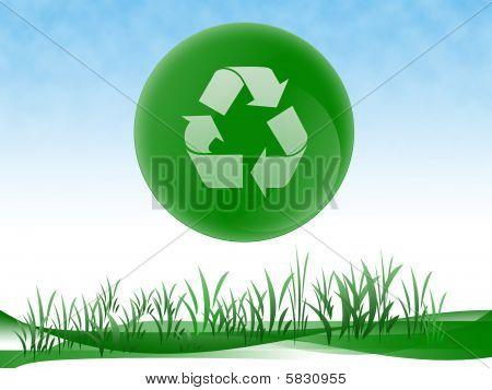 Ökologie design