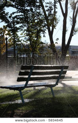 morning mist bench