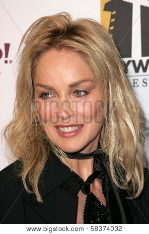 Sharon Stone at the Hollywood Film Festival's 10th Annual Hollywood Awards Gala. Beverly Hilton Hotel, Beverly Hills, CA. 10-23-06