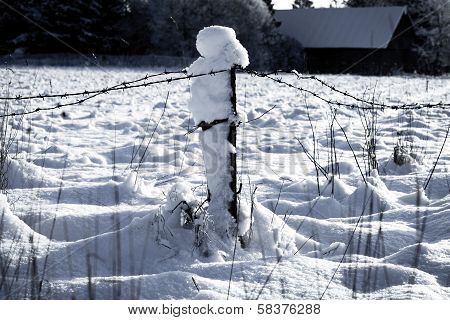 Barbed Wire Fence With Snow