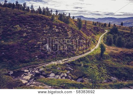 Nature Trail In Mountain Landscape