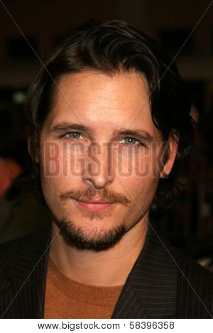 WESTWOOD, CA - NOVEMBER 05: Peter Facinelli at a Special Presentation of
