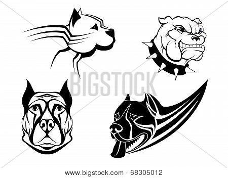 Guard powerful dogs set