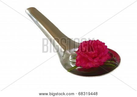 Red flower on the spoon